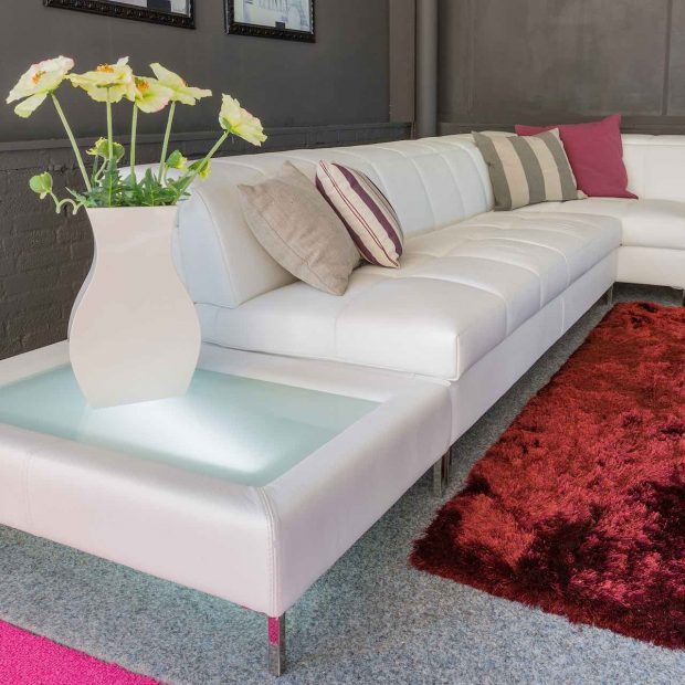 Carpets & Upholstery